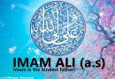 Amir al Momenin (Imam of believers), Imam Ali (PBUH)