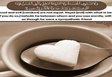 Quran Surah Fussilat