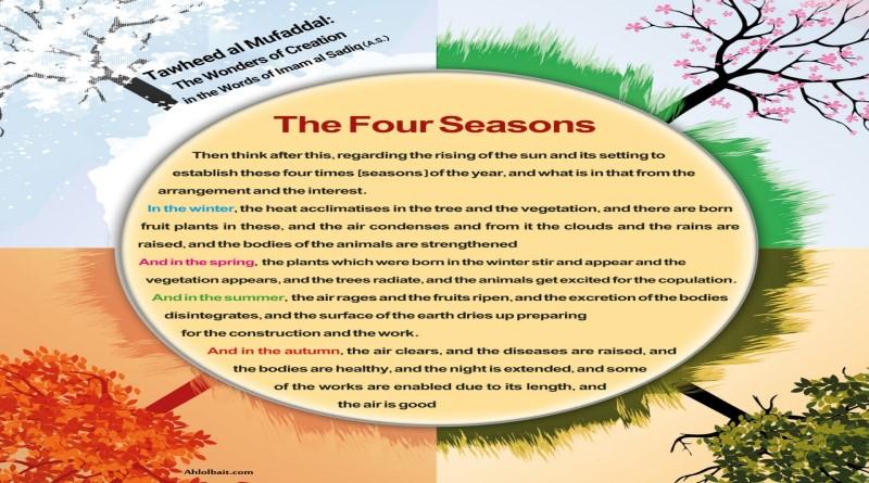 Tawheed al Mufaddal:The Wonders of Creation in the Words of Imam al Sadiq (A.S)