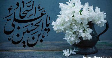 Beyond the beautiful prayers of Sahifa Sajjadieh