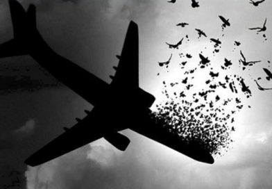 مجلس سوگواری دهه اول فاطمیه به یاد جانباختگان پرواز تهران-کیف
