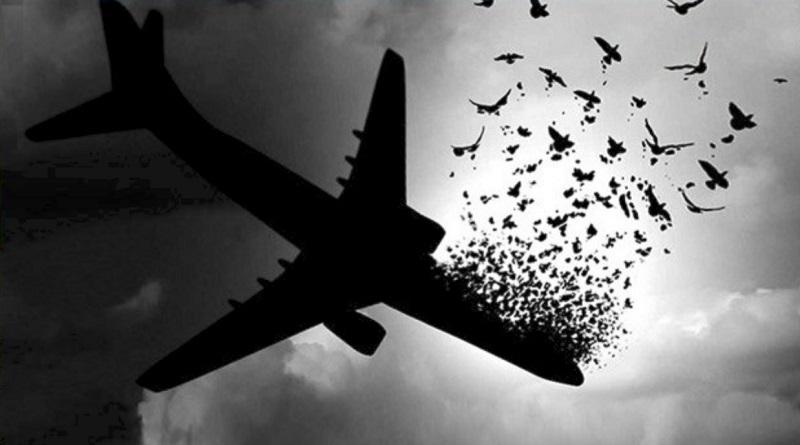 پرواز تهران-کیف